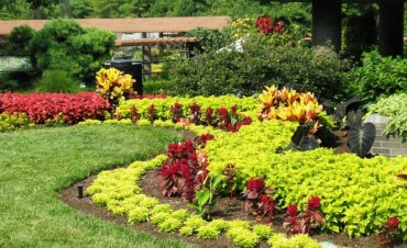 Exceptional Landscaping Ideas