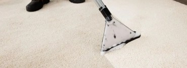 Why carpet cleaning business needs a SEO professional?