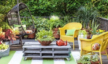 Make your Garden Look Lively with Plants from a Long Island Fall Festival