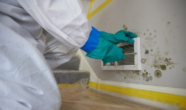 Should you Hire Mold Removal and Remediation Services?